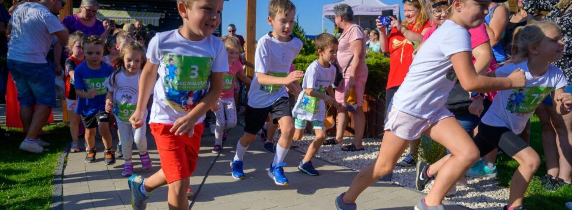 Mali biegacze na plaży